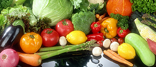 candidiasis crónica dieta