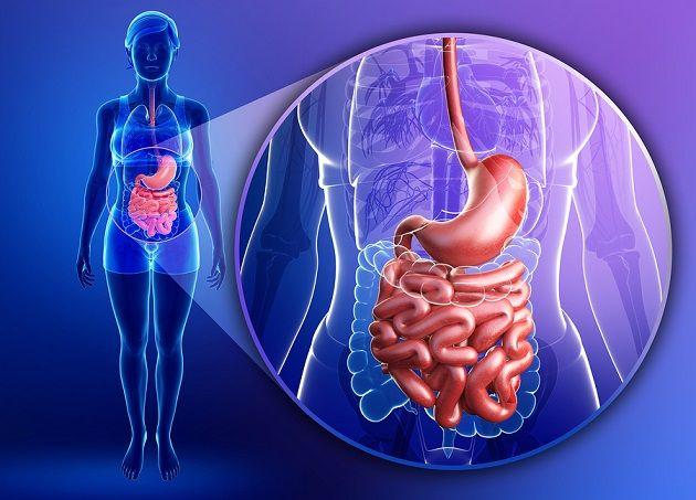 candidiasis intestinal femenina