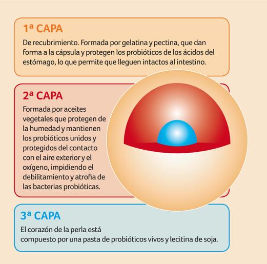 probióticos candidiasis capas